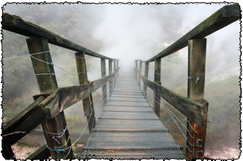 Schacter and Singer suspension bridge suproxin study