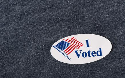 Psychology of Voting